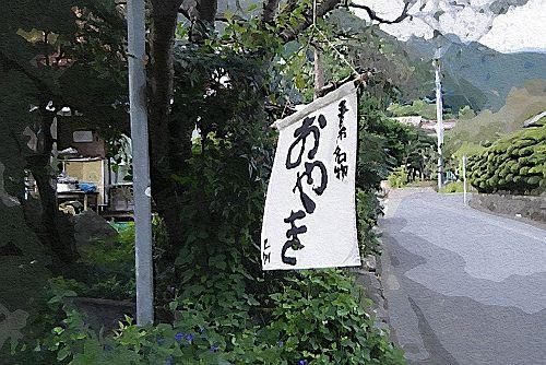 DSCF5994(ガッシュ)