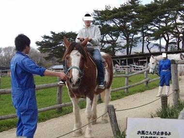 ボクはロバにも馬にも乗れませんでした