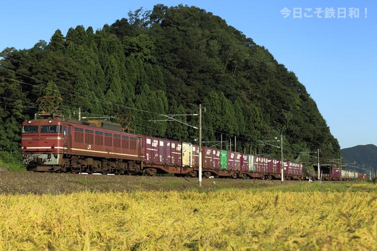 _MG_7172.jpg