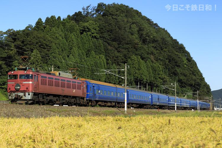 _MG_7179.jpg