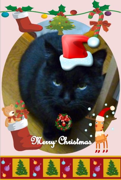 クロクリスマスカード