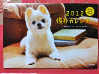 IMG00450-20120101-1725.jpg