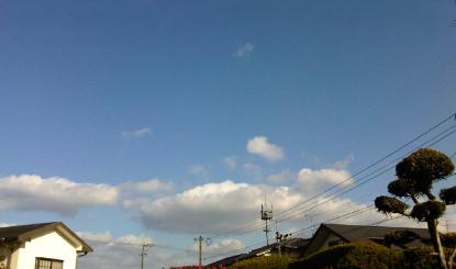IMG00472-20120105-1418.jpg