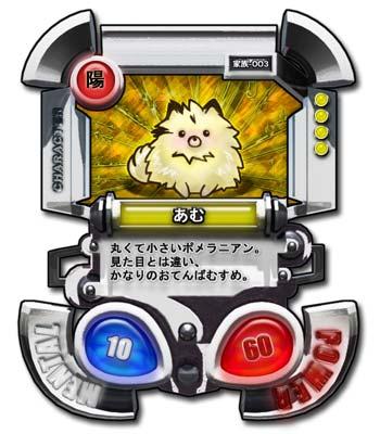 CARD003_あむ_01