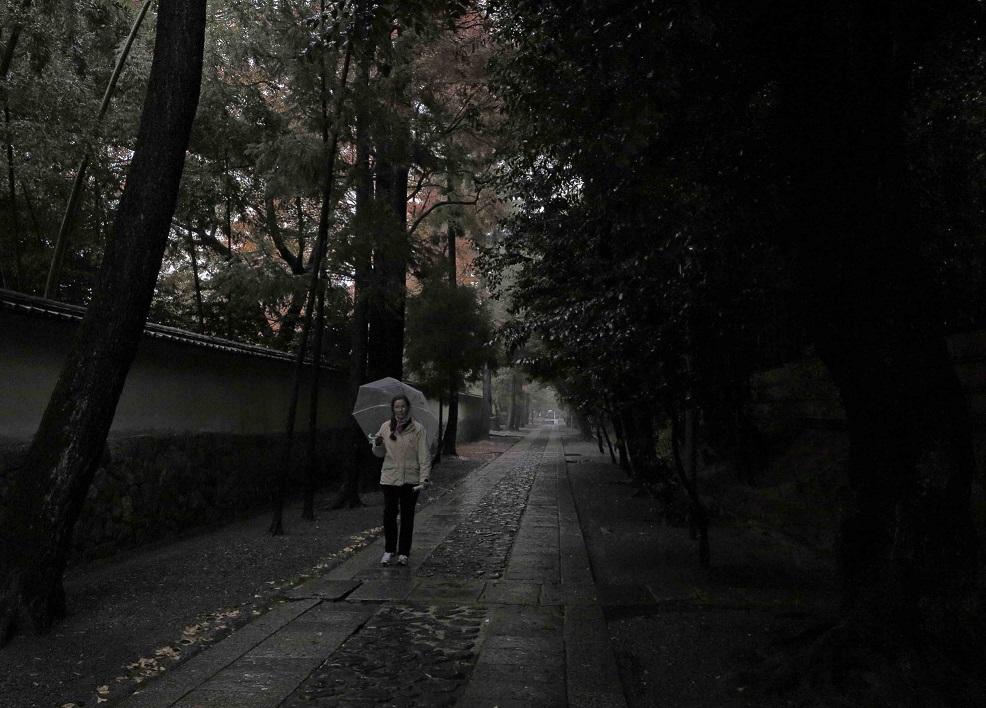 ブログ高桐院5