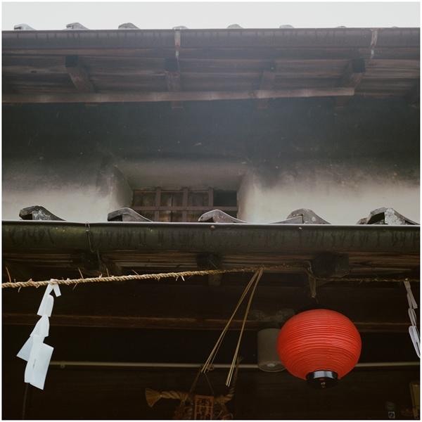 9-portra408-mamiya6-75mm-2014-10-18-大湫-8087003-n_R