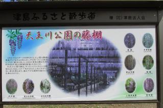 130421tennougawa-005.jpg