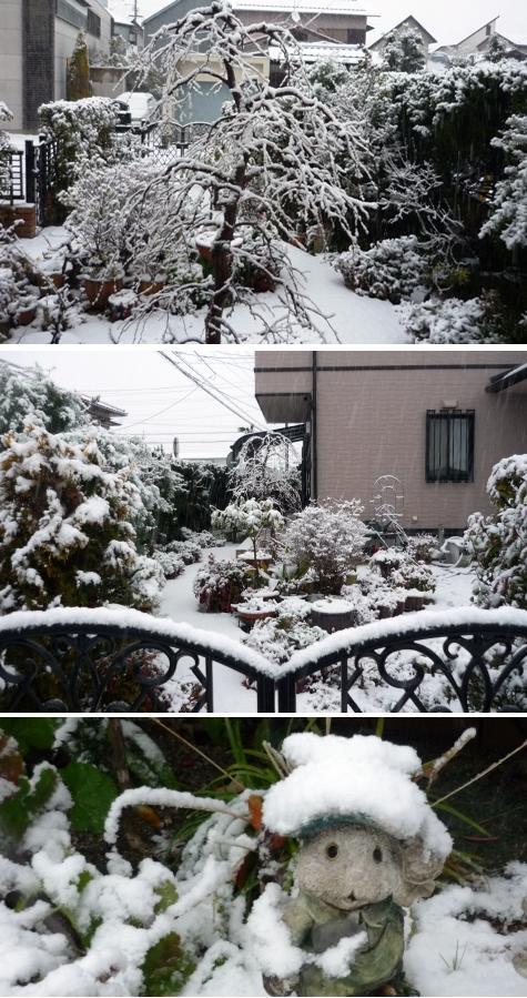 a雪1P1290409