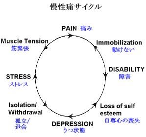 paincycle.jpg