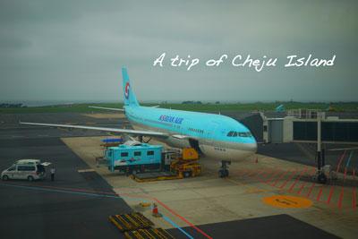 chejyu2.jpg