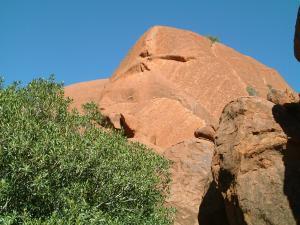 cairns2012-2+094_convert_20120214215628.jpg