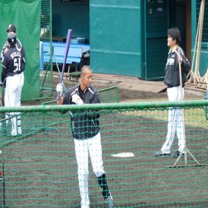 2012.2.11沖縄3