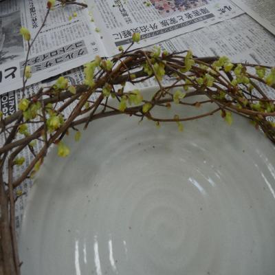 2012.3.21お花4
