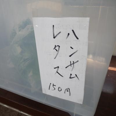 2012.4.18下谷農園3