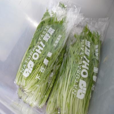 2012.4.18下谷農園2