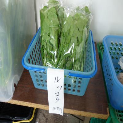 2012.4.18下谷農園
