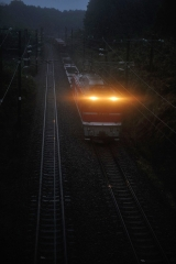 EF81_462