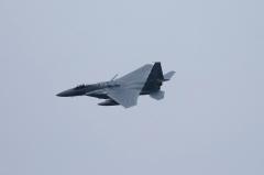 Hyakuri AB_F-15J_204