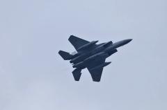 Hyakuri AB_F-15J_206