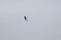 Hyakuri AB_F-15J_215