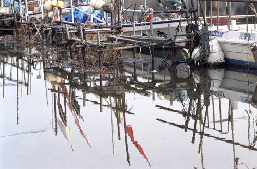 落掘川漁港5