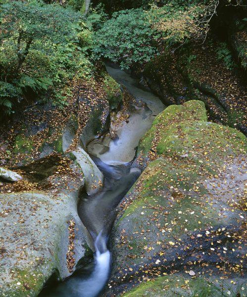 2006秋 険龍峡2
