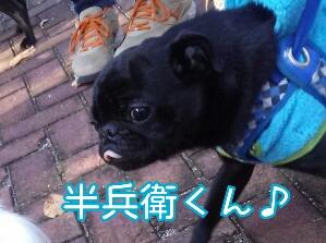fc2_2013-11-29_20-48-47-247.jpg