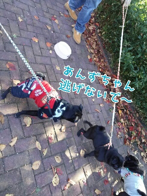 fc2_2013-12-02_19-42-11-260.jpg