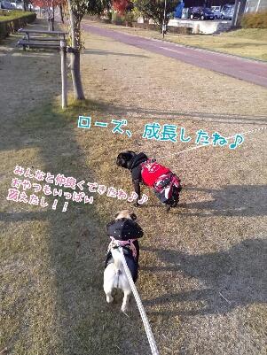 fc2_2013-12-03_20-42-31-097.jpg