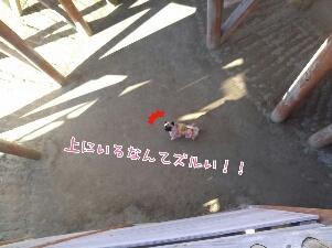 fc2_2013-12-09_19-59-28-833.jpg