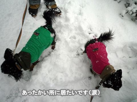 2kanazawa13
