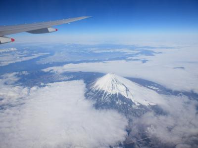 SCOOT AIR「成田⇔台北」4