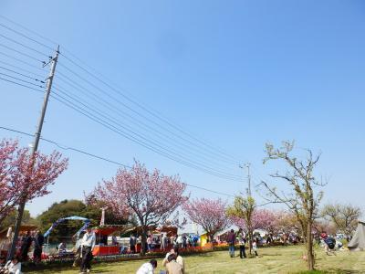 あけぼの山農業公園12