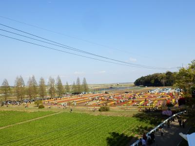 あけぼの山農業公園19