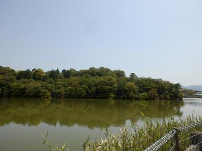 奈良市郊外サイクリング8