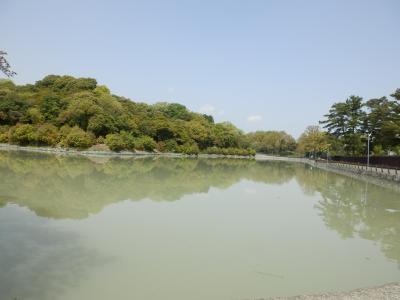 奈良市郊外サイクリング9