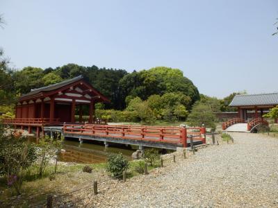奈良市郊外サイクリング24