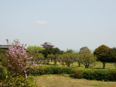 奈良市郊外サイクリング34