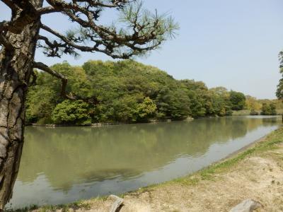 奈良市郊外サイクリング35
