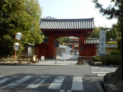 奈良市郊外サイクリング47