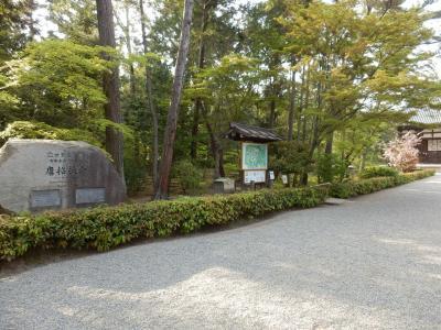 奈良市郊外サイクリング51