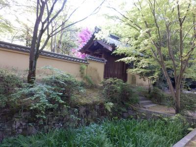 奈良市郊外サイクリング55