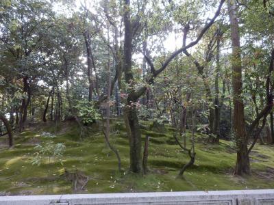 奈良市郊外サイクリング60