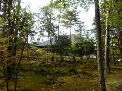 奈良市郊外サイクリング61