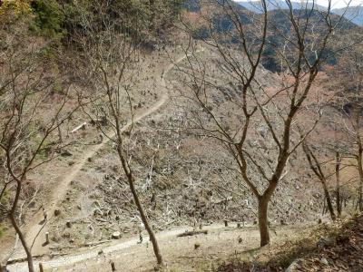 奈良・吉野の散策19