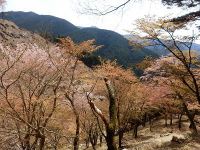奈良・吉野の散策14