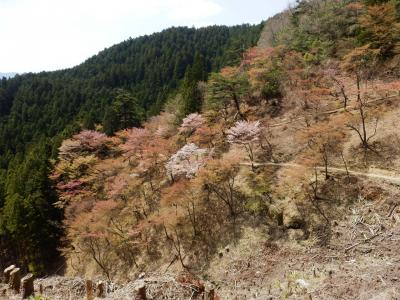 奈良・吉野の散策21