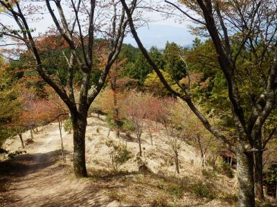 奈良・吉野の散策33