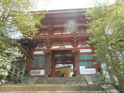 奈良・吉野の散策35