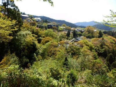 奈良・吉野の散策49